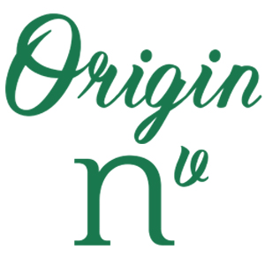 Logo Origin Nv